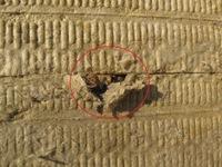 Фасад утепленный минеральной ватой ТЛ Фасад Термолайф